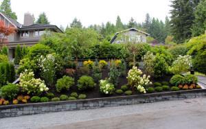 Vancouver Lawn Care & Garden Maintenance