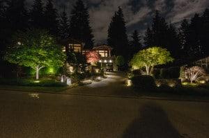 Garden Light Design