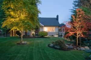 Garden Maintenance & Landscape Design Services