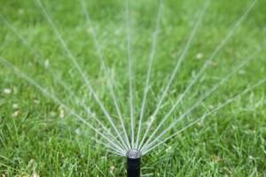 sprinkler_-_istock_000016836088medium_0