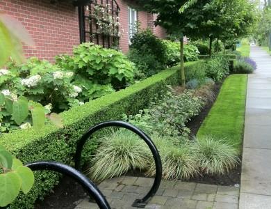 Strata & Commercial Landscape Services