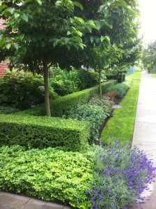 Commercial & Strata Landscaping Services for North Vancouver