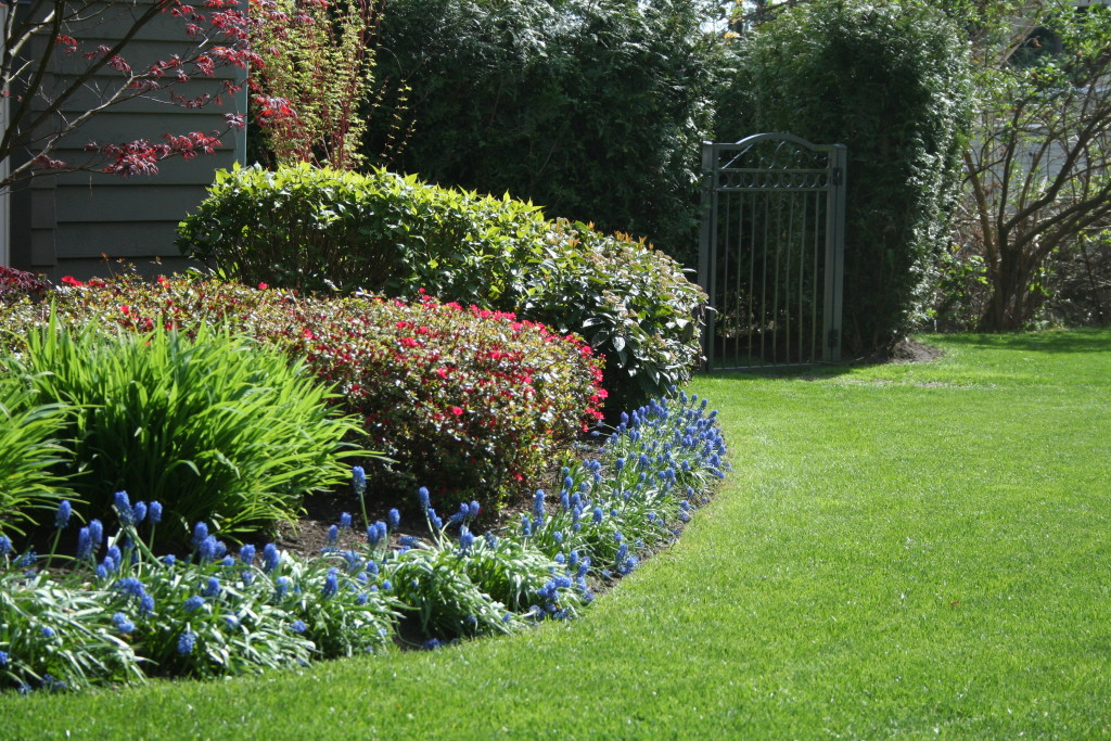 North Vancouver Lawn & Garden Maintenance